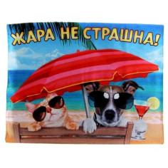 "Охлаждающий коврик Пижон ""Жара не страшна"" medium"