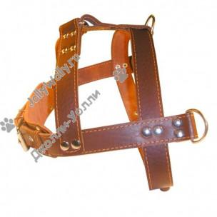 Шлейка Collar Универсальная тяговая 2