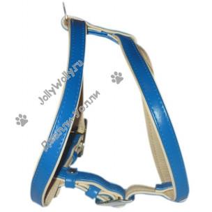 Шлейка Collar Brilliance для средних и крупных собак