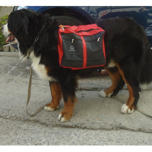 Сумка на спину Collar для крупных собак