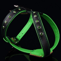 Шлейка Zooleszcz NEO Crystal со стразами Green 50-57 см