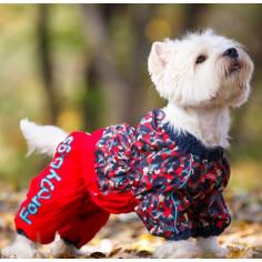 Комбинезон-дождевик ForMyDogs камуфляжный Red для девочки