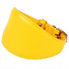 Ошейник Collar Glamour 26-32 см для борзых собак