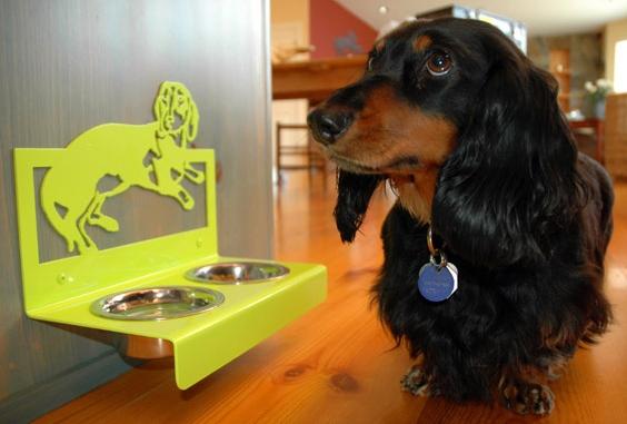 миски для маленьких собак