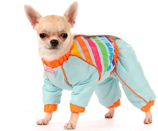 комбинезоны для собак