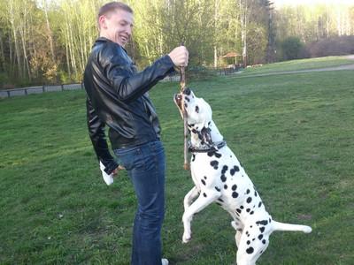 оскар веселый пес