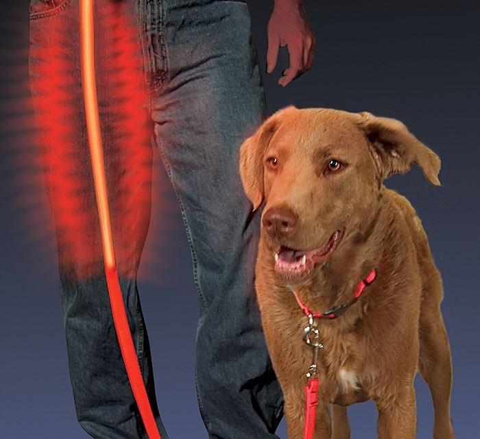 светящиеся поводки для собак