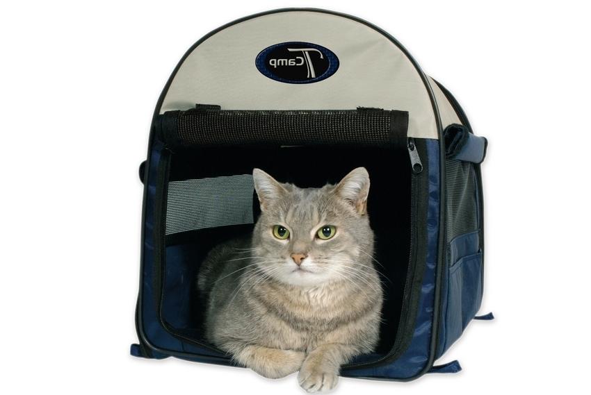 сумки-перевозки для кошек
