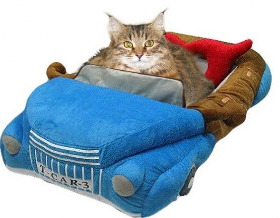Лежанка для кошки своими руками: мастер-классы
